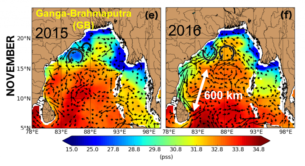 Figure 1: Geostrophic currents computed from sea level anomalies overlaid on sea surface salinity in November 2015 and 2016. The southward East Indian Coastal Current is stronger in 2016, carrying the River plume further south than in 2015.